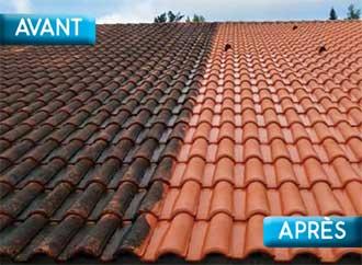 Prix anti-mousse de toit