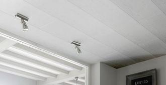 Prix d\'un plafond en lambris de PVC en 2020